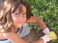 Sammy in the garden 3