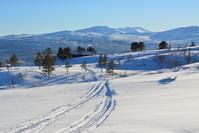 Norwegian mountain ski track 2