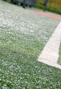 sports field 2