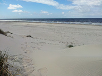 Blavand Strand Northern Sea 5