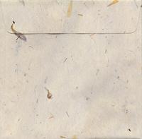 Square envelope for CD 2