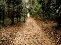 Stone Brick Road