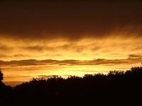 Etowah Sunset
