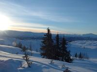 voss ski session 19