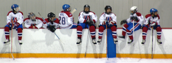 Hockey Series 1