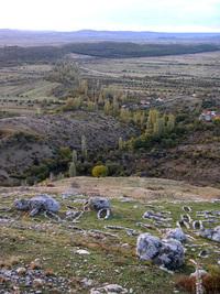 Bribir's field