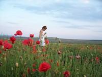 Monica in Poppyland