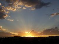 Sunset Series, Chihuahua 3