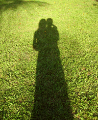 Love shade