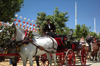 Feria de Sevilla 2005 5