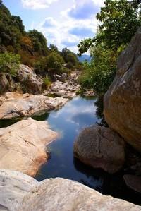 Small mountain river creek