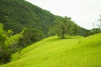 Mountain Hiking Photos 4