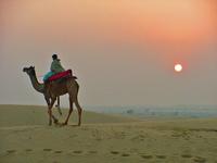 Rajasthan's Dune 3