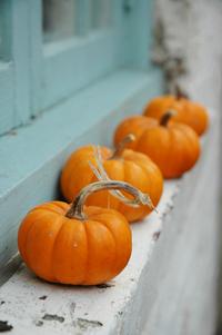 The pumpkin parade