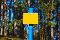 Yellow board
