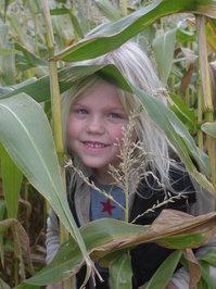 my daughter in cornfield