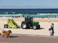 Australia Beach Cleaning 1