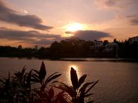 sunset again