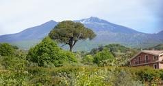 landscape at Etna