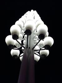 A sophora-flower-style streetlight