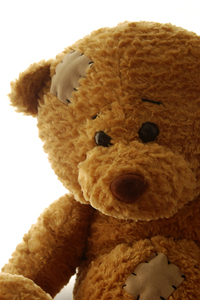Herbert Bear 1