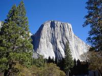 Yosemite and Grand Tetons
