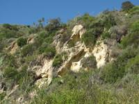 Laguna Ridge Trail Geology