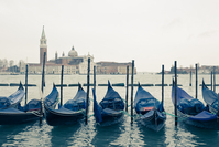 Scenes from St Mark's Square In Venice 4