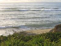 California Coastline 4