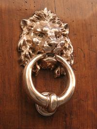 Lion Door 1