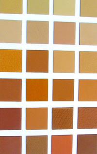 Colour Grid 3