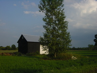 michigan cottage 3