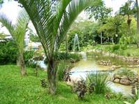 Garden Park 4