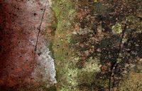 mossy brick 2