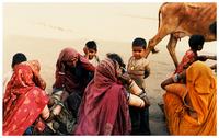 marwari's women