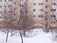 SnowImpressions 14