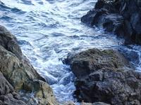 Rocky Shores 1