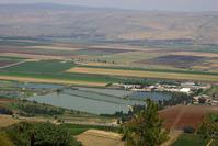 Jordan Valley - close up 6