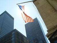 shining flag