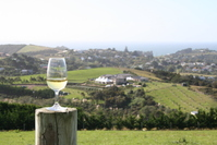 White Wine with a View