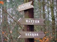 Forrest Sign
