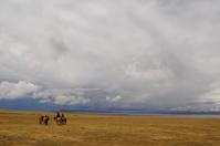 Tibet grassland