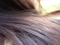 Hair Series 1