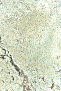 Lunar ground