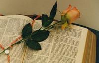 Biblia e rosa 2