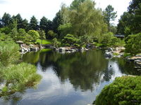 Denver's Asian Garden 3