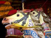 Merry-go-round horses 1