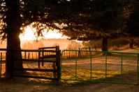 Morning sunrise farm