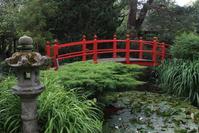 Japanes Bridge 3