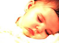 Little cherib 2
